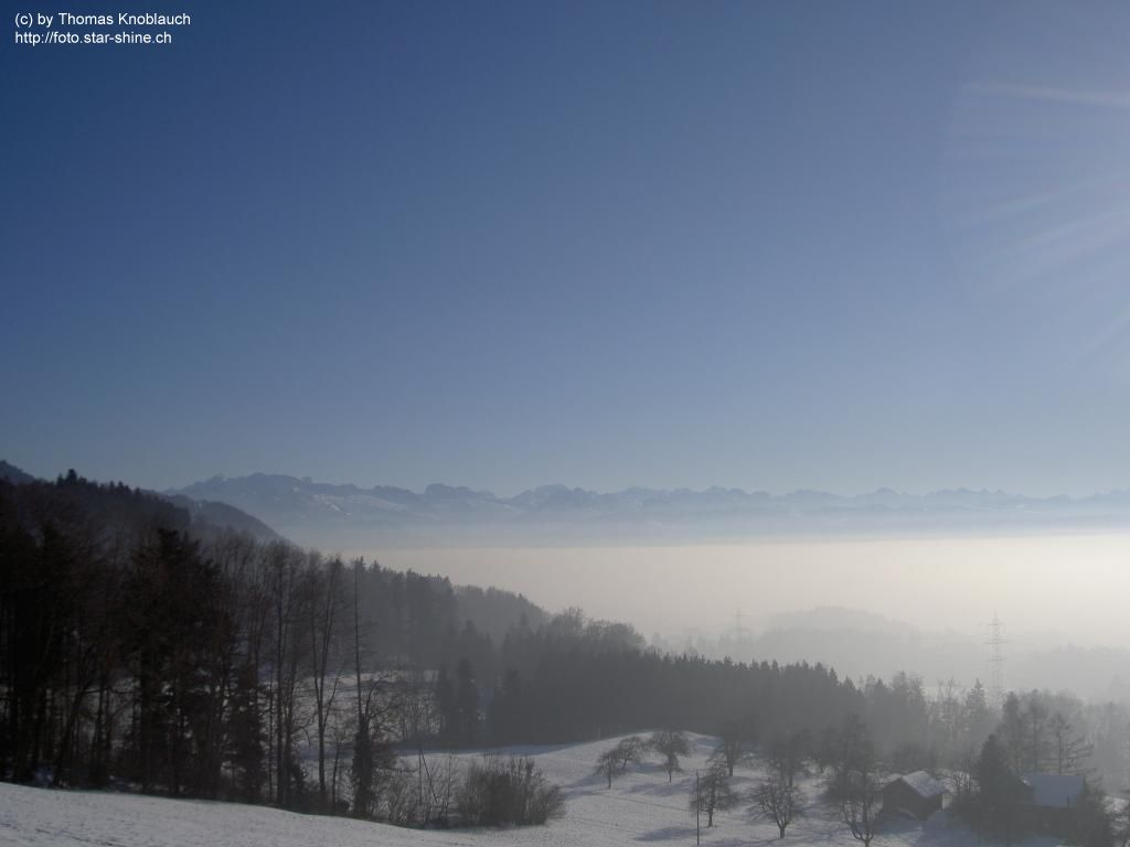 Sea of fog above oberer Zürichsee