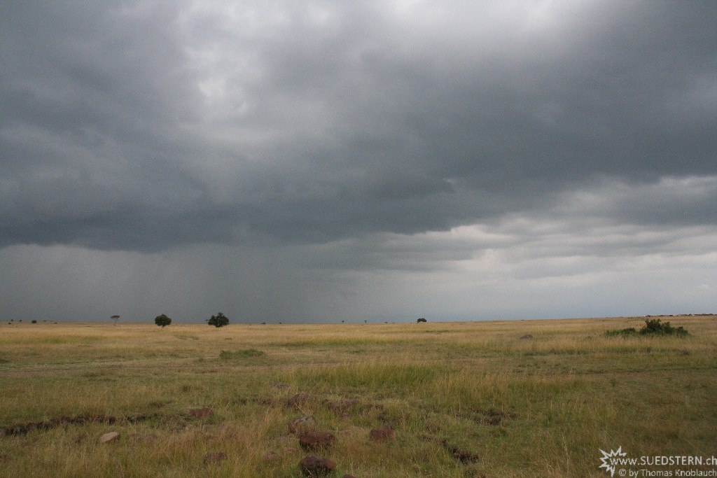 IMG 8227-Kenya, rain is coming to Masai Mara