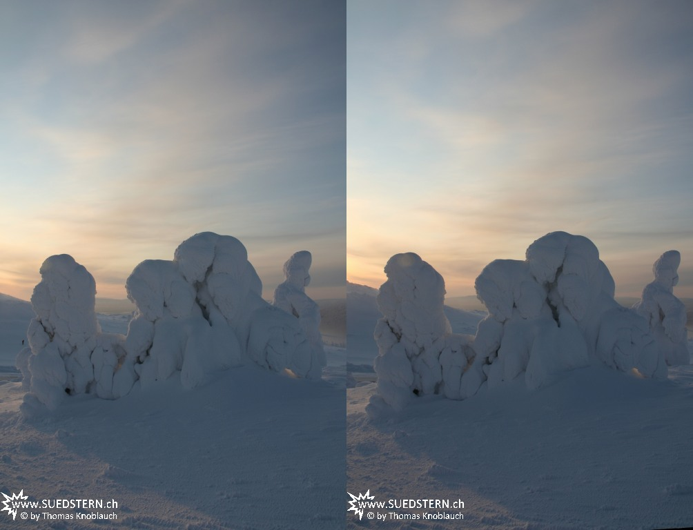 2012-02-03 - Frozen trees on Levi Hill, Finnaland 3D