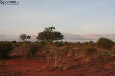 IMG 7592-Kenya, dawn at Tsavo East